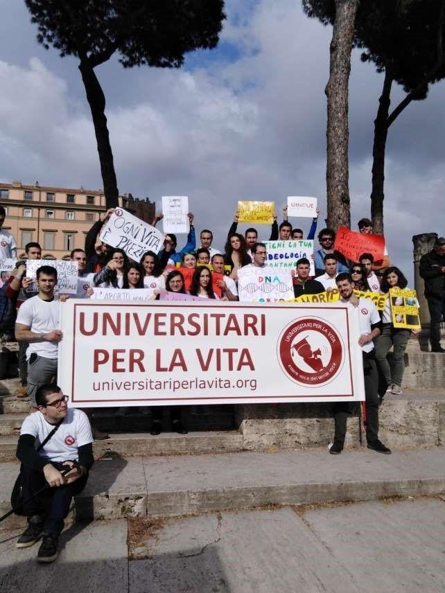 Universitari-MPLV-2019
